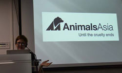 psb Animals Asia