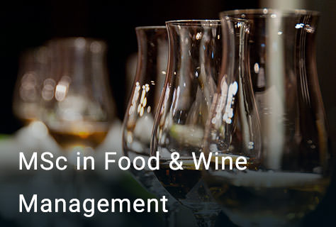 MSc Food and Wine Management