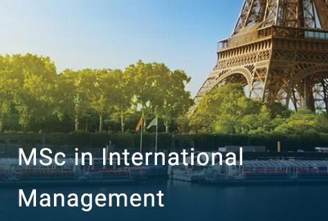 MSc in International Management