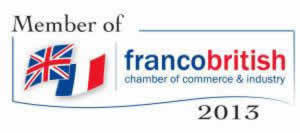 The Power of E-Networks Conference with Paris School of Business & Franco-British Chamber of Commerce and Industry