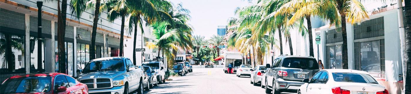 Tom Guerlain Weckmann: Recommandations pour votre année d'études à Miami.
