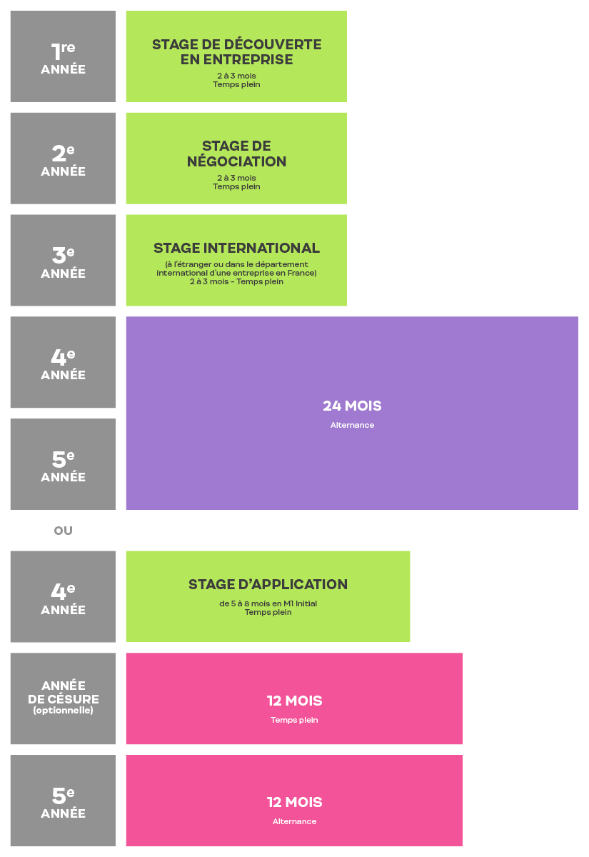 Stages et Alternance Programme Grande Ecole