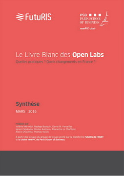 synthese-livre-blanc