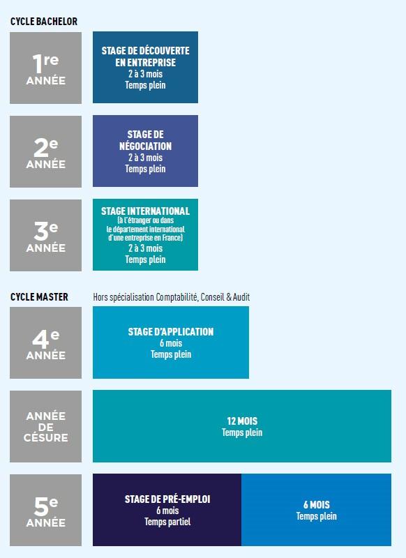 Le cycle des stages à PSB