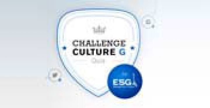 logo challenge culture g école de commerce