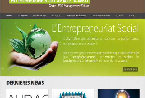 capture d'écran site chaire  Entrepreneurship & Sustainable Business