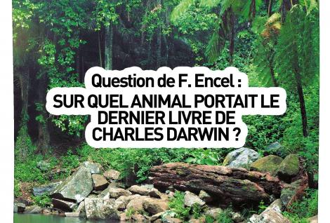 Question 5 du Summer Quizz